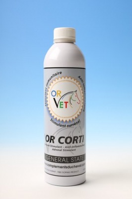 OR-VET OR-CORTISON 600ML
